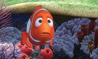 Fan theory about 'Finding Nemo'