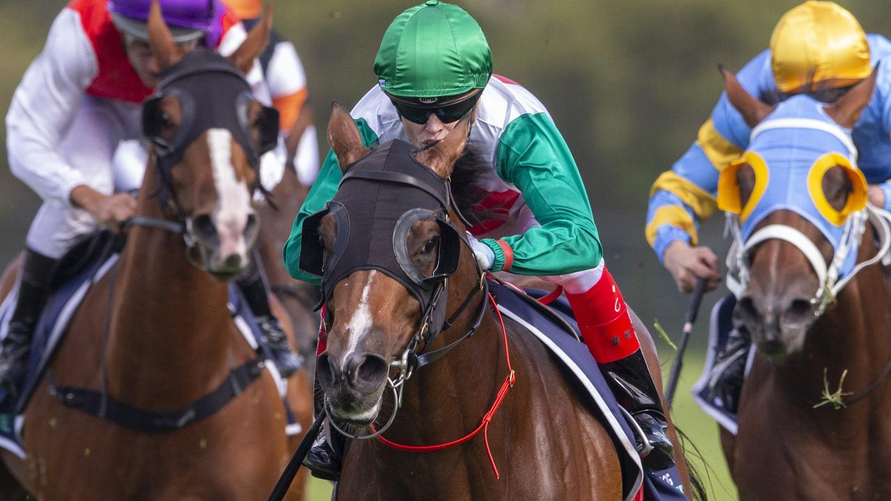 Castelvecchio added the Group 1 Rosehill Guineas to his resume in the autumn. Picture: Getty Images