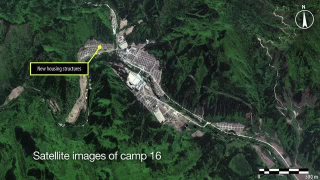 Inside North Korea's prison camps
