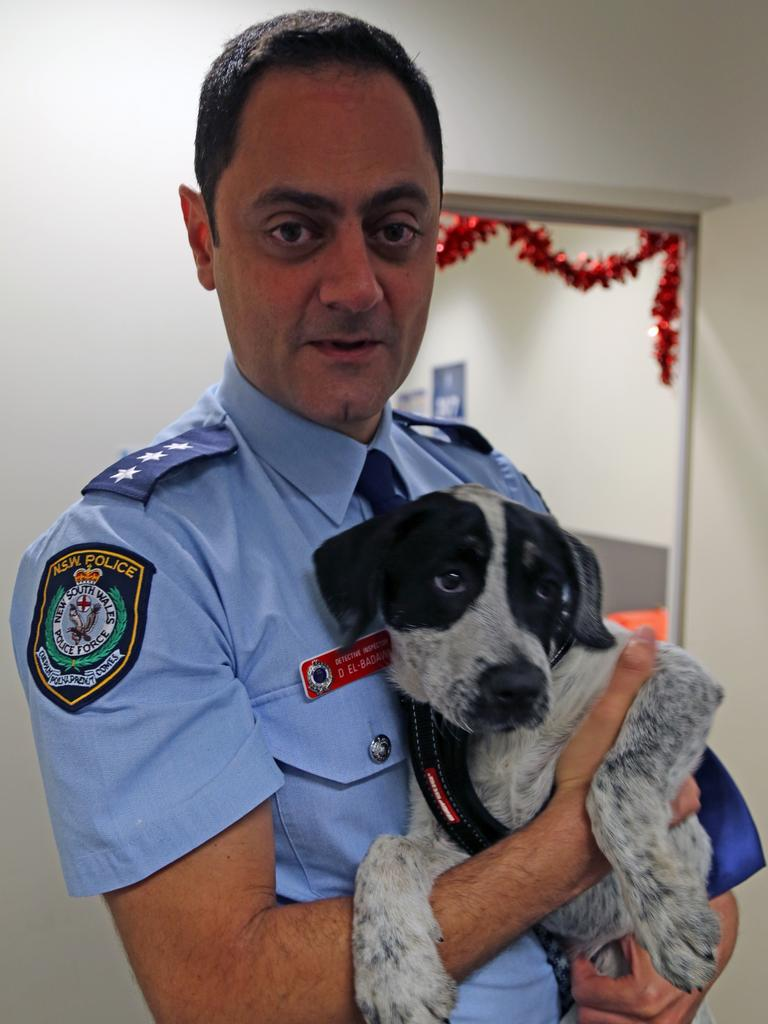 Speck was handed in to police in Sydney. Picture: Supplied