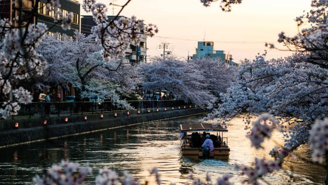 For obvious reasons this road is popular during Sakura Season or Cherry Blossom season, one of Japan's most festive times of year. For more info, take a glance at Escape's Kyoto cheat sheet. Picture: Kristin Wilson/Unsplash