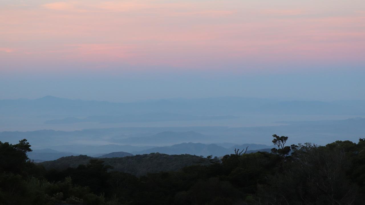 Montverde cloud forest, Costa Rica. Picture: Megan Palin