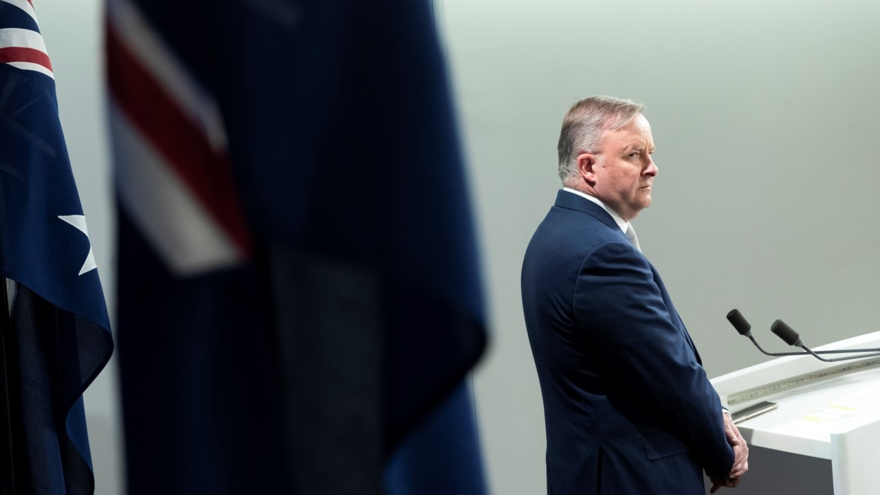 Anthony Albanese 'still has time to improve the party's position': Fitzgibbon