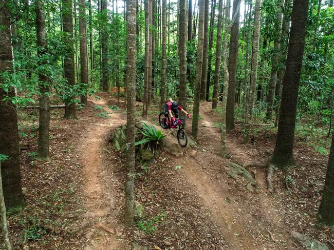 MTB LIKE A PRO Burn off pent-up energy in the tyre tracks of world champs in Cairns. Smithfield Mountain Bike Park is riddled with 60 kilometres of trails offering up everything from white-knuckle rides to friendly beginner tracks the whole family can enjoy.