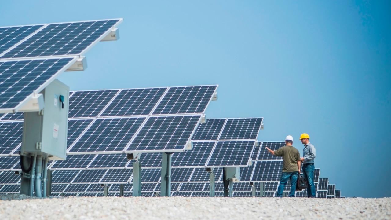 Renewable energy is 'an indulgence of lefties': Bernardi