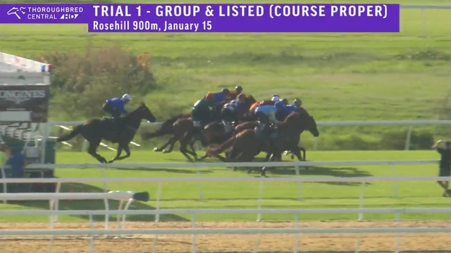 Winx jumps out last and cruises in barrier trial