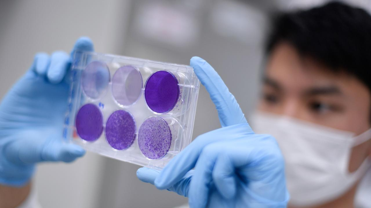 Around the world, attempts are being made to make a COVID-19 vaccine.