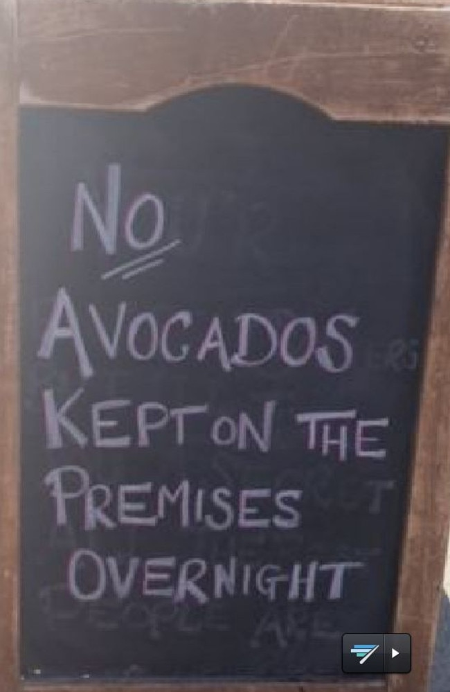 Comparing avocados to cash in Sydney. Picture: Twitter/Maria Lewis