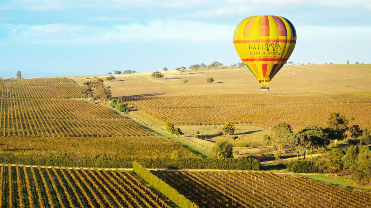 Balloon Adventures float above Barossa Valley wine country. Picture: Supplied