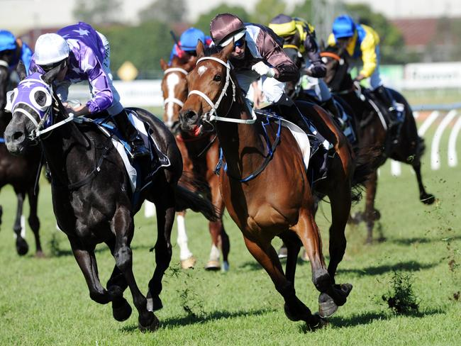 Awoke (right) claims Foxplay on the line in the opening race on Saturday. Picture: Simon Bullard