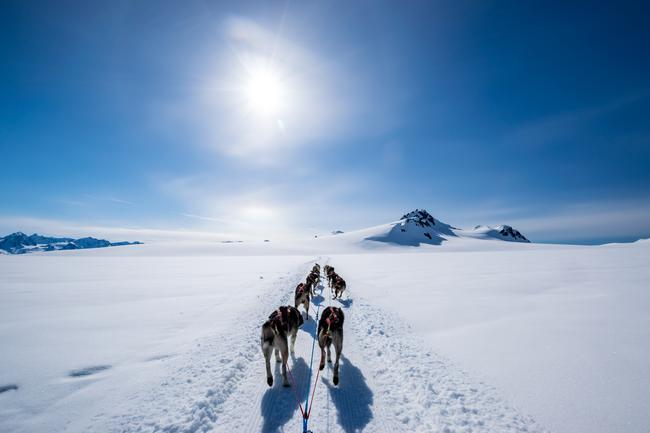 MUSH YOUR OWN DOG SLED VIA PRIVATE HELICOPTER TRANSFER, NORRIS GLACIER, ALASKA: For a true Alaskan adventure that offers a taste of life in the wilderness in the Last Frontier; mushing your own dog sled is pretty hard to beat. This two part experience will see guests on Seabourn's 2019 Alaska itinerary board a private helicopter to journey to a dog sled camp in the middle branch of the picturesque Norris Glacier. Accessible only by air, the chopper ride will offer a bird's-eye view over the vast Juneau Icefield, alongside spectacular icefalls and jagged rock formations, before arriving at the camp where it's over to the canine crew. After learning key commands, visitors will then hop on to their own self and zip across the pristine glacier, mushing a team of friendly huskies.  seabourn.com