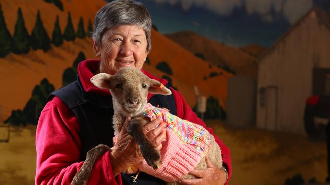 """Nola Bruton has knitted for the """"Jumpers For Lambs"""" campaign, to keep warm the lambs who have lost their mothers to the drought. Picture: Tait Schmaal"""