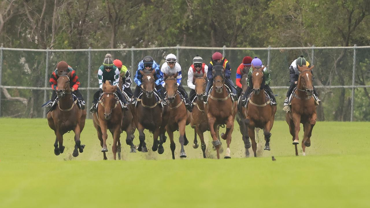 Chris Waller had all 10 runners in the Rosehill barrier trial on Friday. Photo: Mark Evans/Getty Images