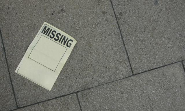 a poster for a missing child or person. Te box is empty so you can add your own image, and some text at the bottom.
