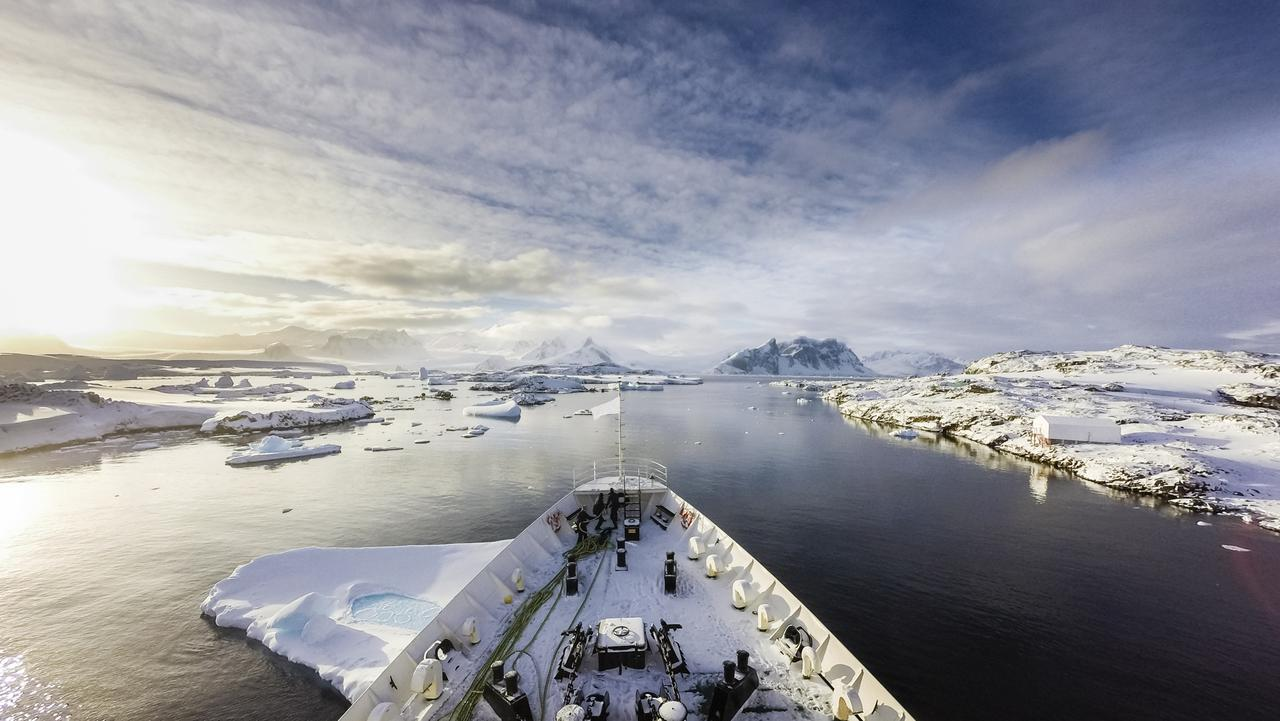 Visiting Antarctica 9 Things You Need To Know Escape