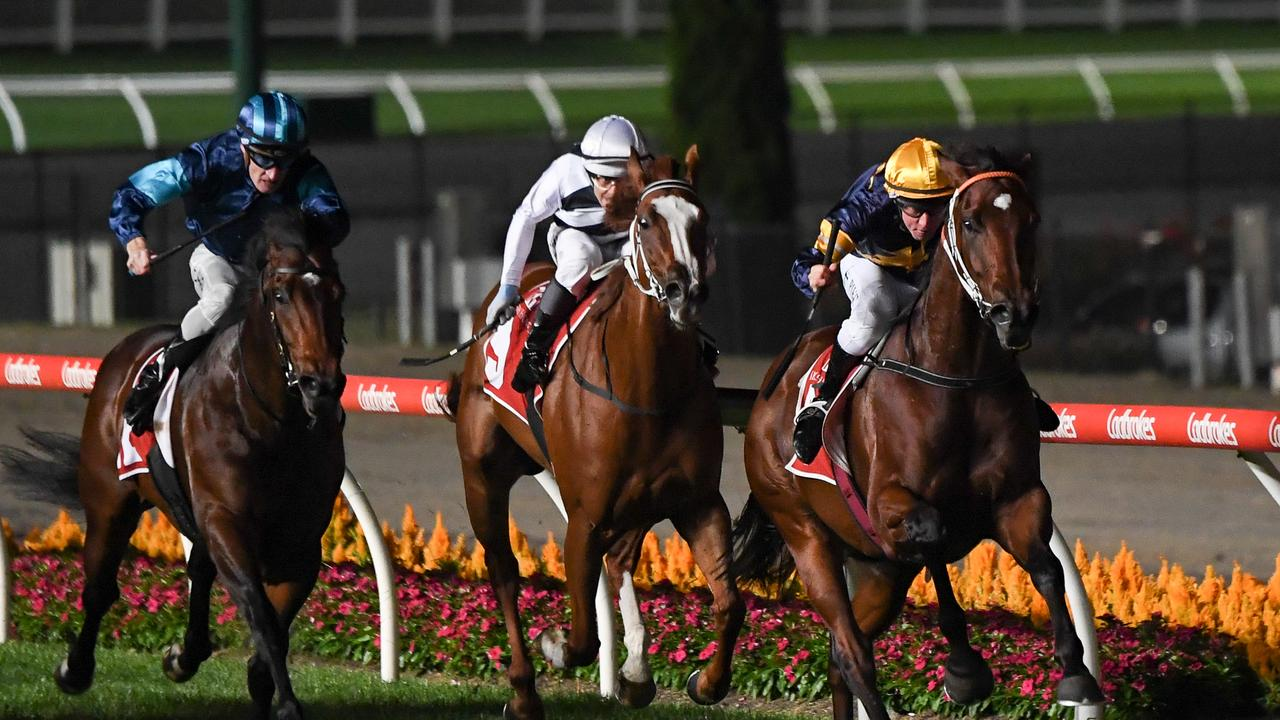 Masked Crusader ridden by William Pike streaks away with the William Reid Stakes. Photo: Pat Scala/Racing Photos via Getty Images
