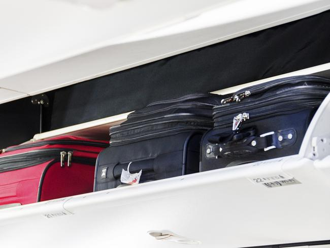 Bags falling on top of people was not uncommon on flights, Ms Egorova said.