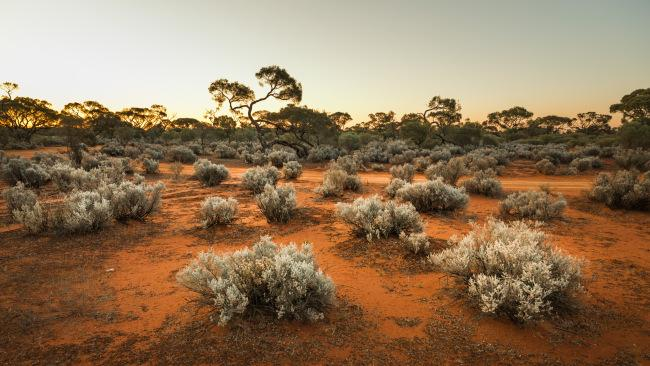 The South Australian outback is a playground for excavators.