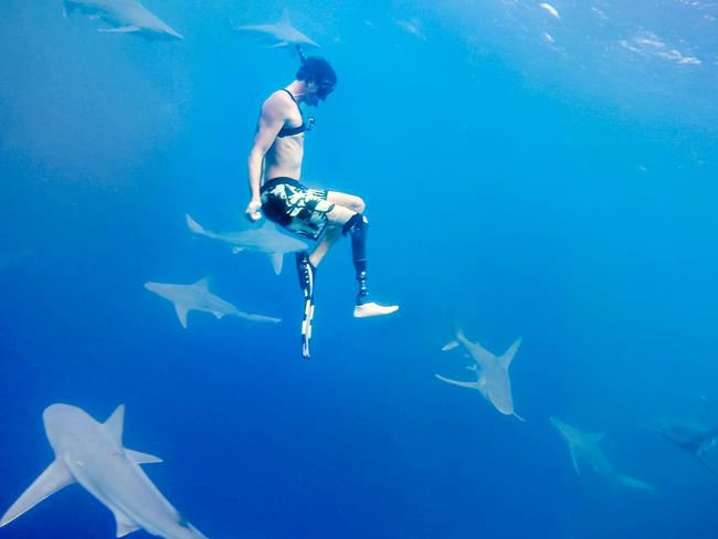 Mike Coots doesn't mind hanging out with the sharks. Picture: Caters