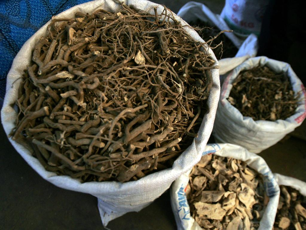Kava root, taken at a Kava Market in Suva. Picture: Supplied