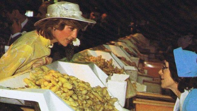 A hit with the locals ... Princess Diana and Prince Charles went to the nearby Ginger Factory before heading to the Big Pineapple in April 1983.