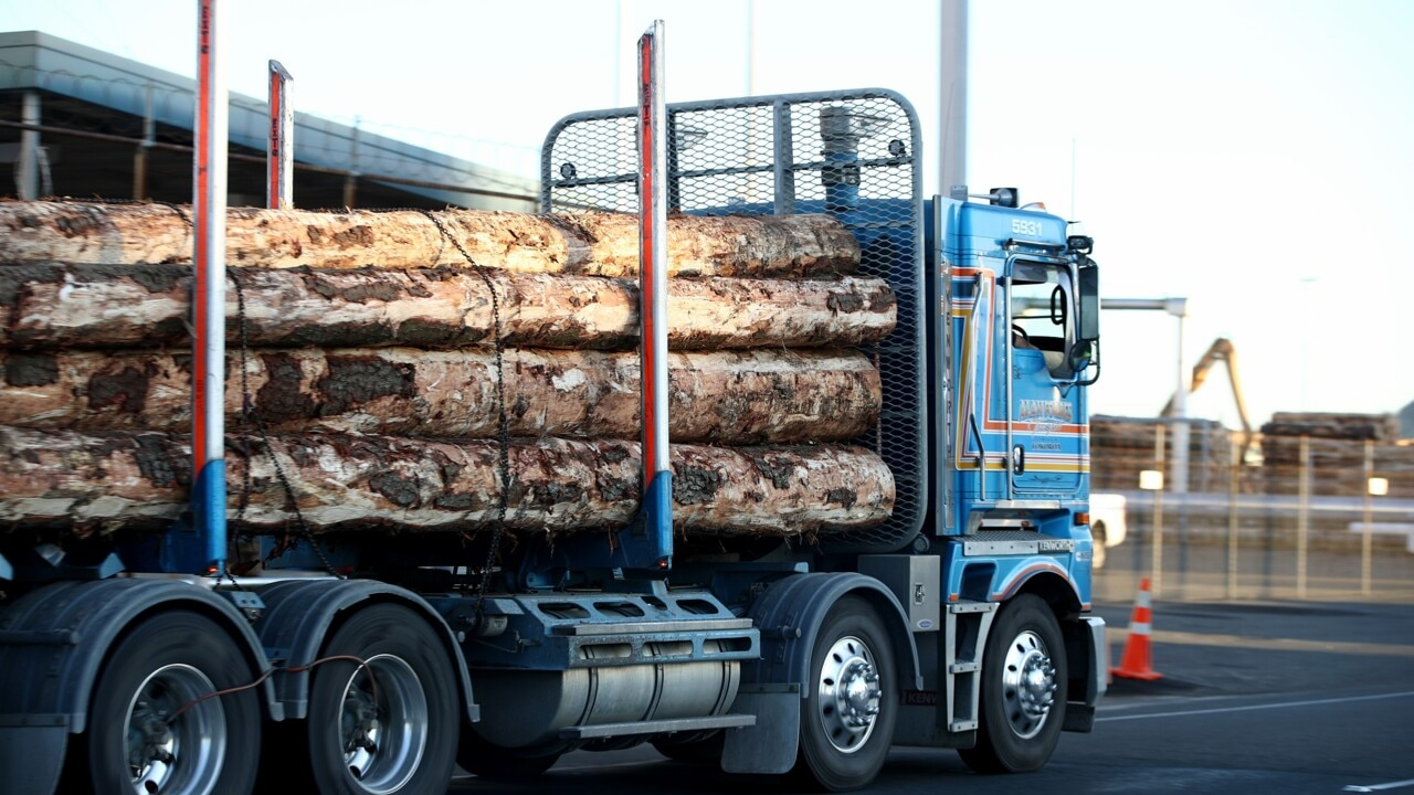 Timber the latest target caught up in Australia-China trade tensions