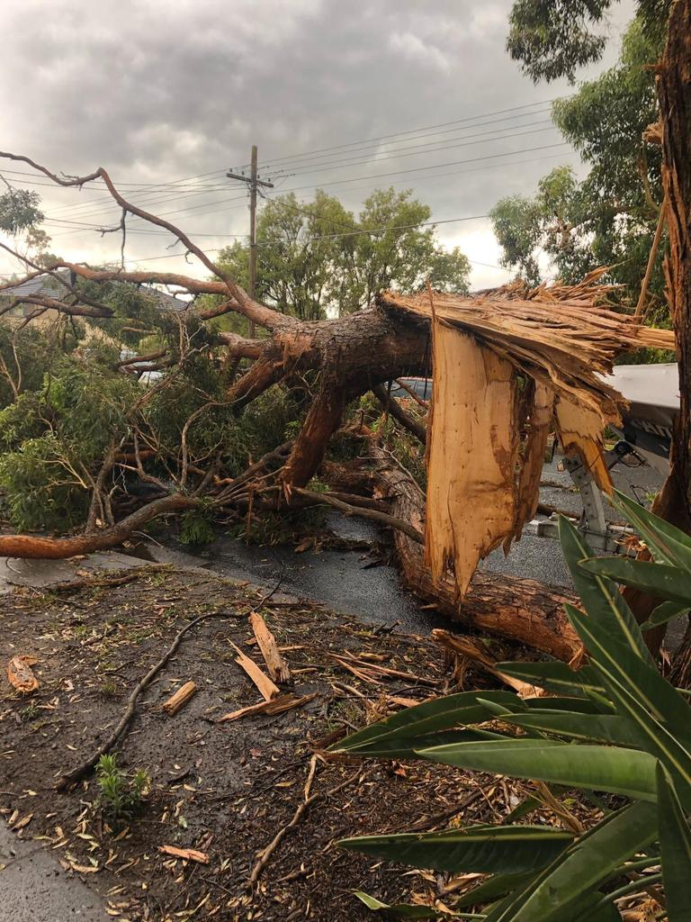 The Sutherland Shire was one of the worst hit areas in Sydney. Picture: Kristie Stubbs
