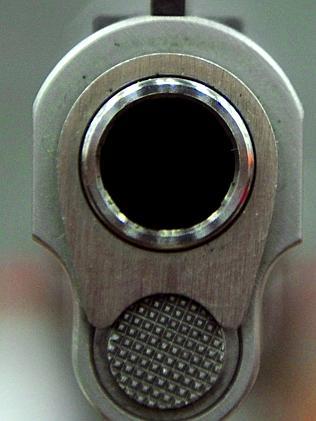 Judge puts Washington handgun ban on hold