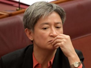 Penny Wong has been an outspoken supporter of gay rights. Image: Getty