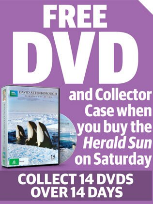 Collect the DVDs.
