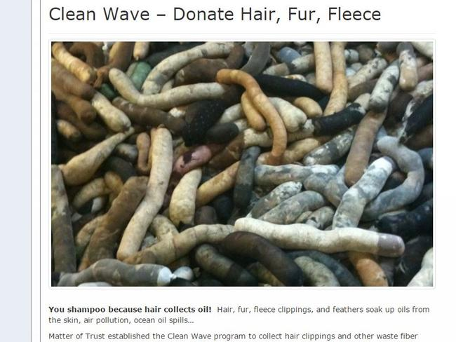 It's hard to mock this, as it's a genuinely worthy cause ... it's better they use your old hair than a penguin lose its life.