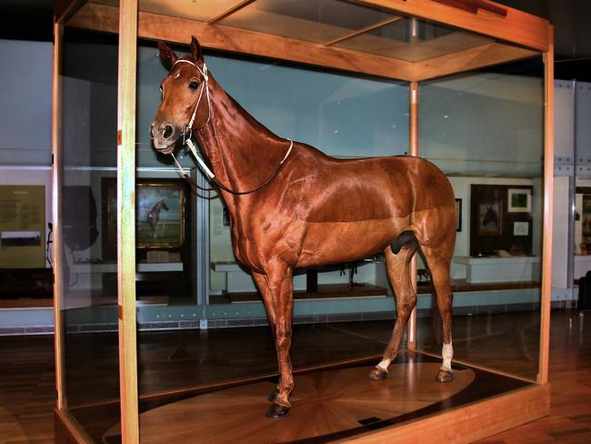 43. CULTURE CAPITAL? Actually, Melbourne Museum's most popular attraction is the stuffed hide of champion racehorse Phar Lap. Farlap means 'lightning' in Thai, and, weirdly, the horse that played him in the film died from lightning strike in 1999.