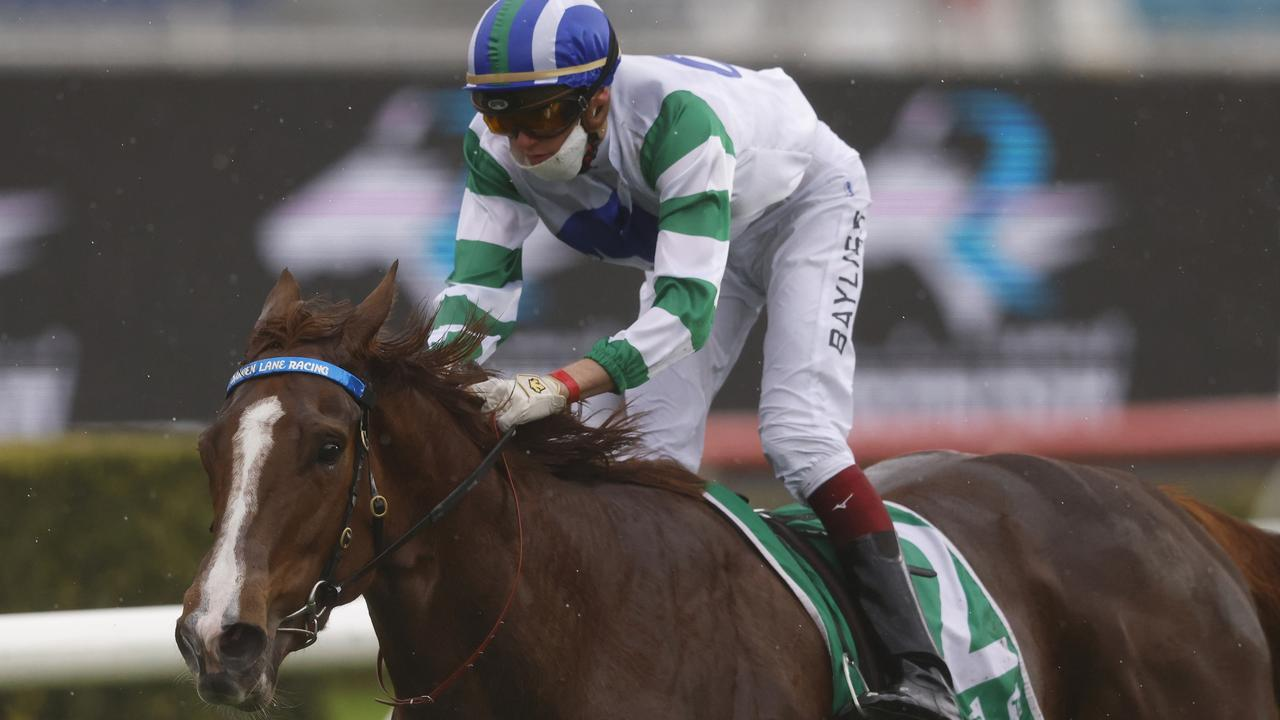 The in-form Zorocat will be hard to beat in the Midway. Picture: Getty Images