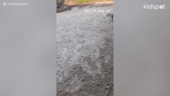 TikTokker didn't tell builders they were landscaping the wrong yard