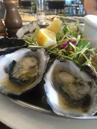 The Senator feasted on 'delicious fresh oysters' on the journey. Picture: Facebook