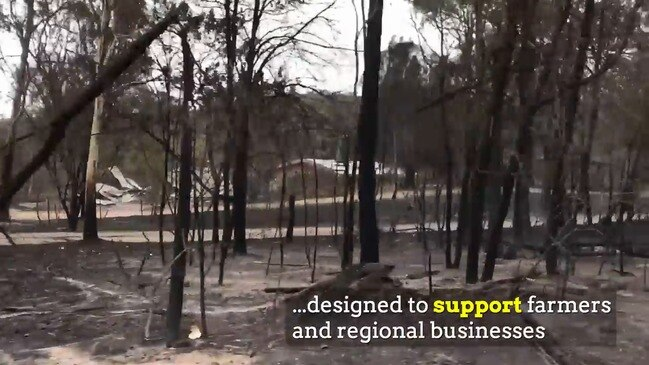 Push for backpackers to help with bushfire recovery