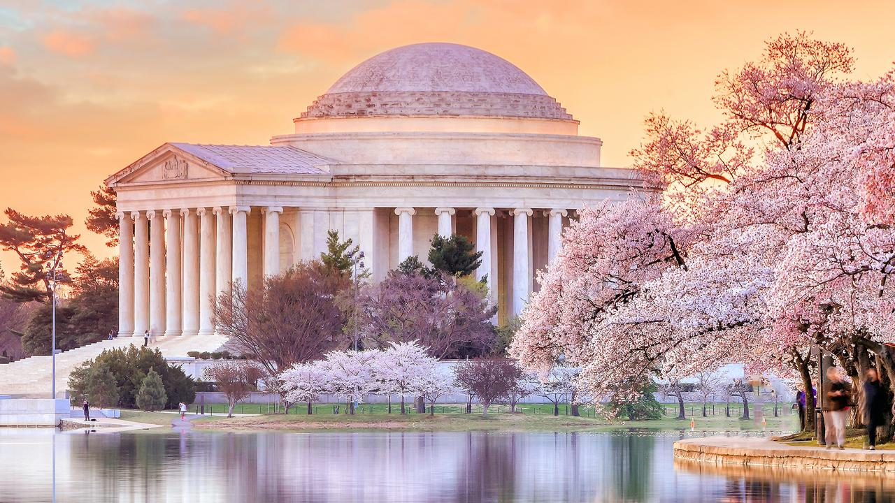Japan isn't the only place with pretty flowers. Jefferson Memorial shines during the Cherry Blossom Festival in Washington DC.