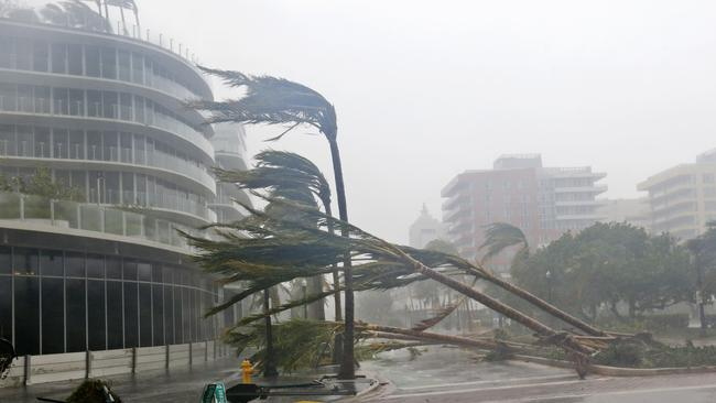 Recently planted palm trees lie strewn across the road as Hurricane Irma passes in Miami Beach. Picture: AP