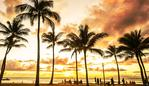 Golden hour sunset along Waikiki Beach