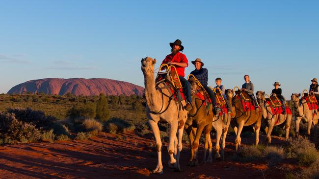 Or you could be like cricket legend Matthew Hayden and ride a camel.