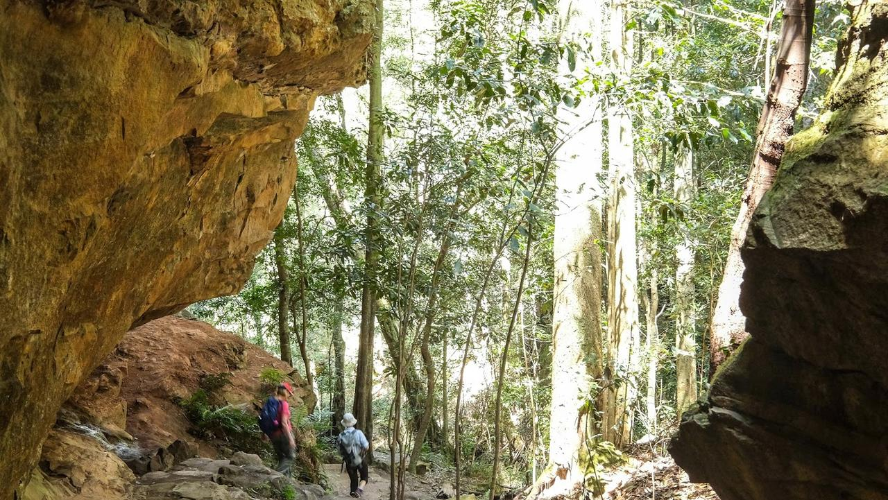 Supplied Travel WHAT'S YOUR BUDGET: AUSSIE HIKING HOLIDAYS. Blue Mountains Grand  Traverse - descending to Greaves