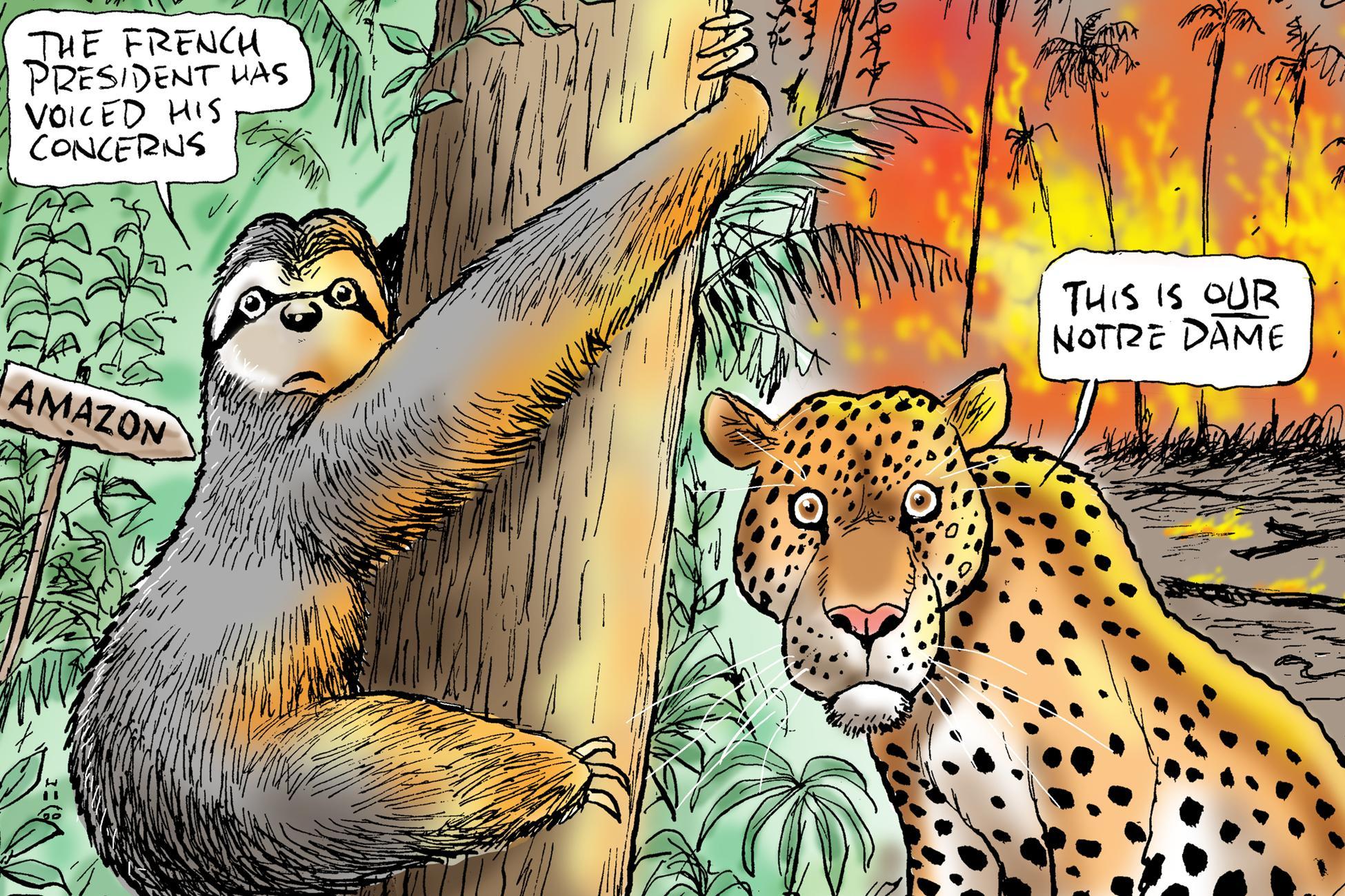 Mark Knight's cartoon on the Amazon fires