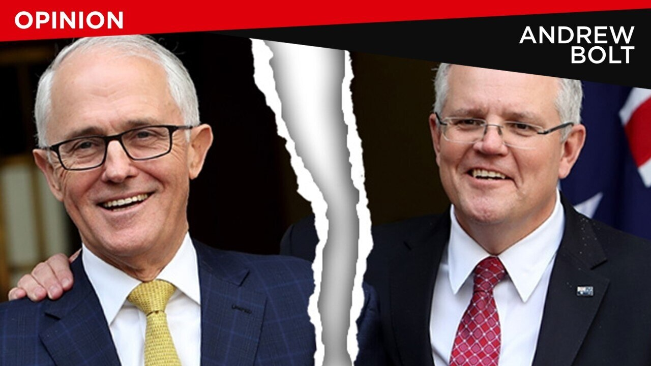 Turnbull is sabotaging the Liberals to prove they were wrong to reject him