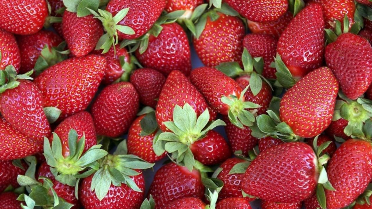 MARKETS: Fresh Strawberries.