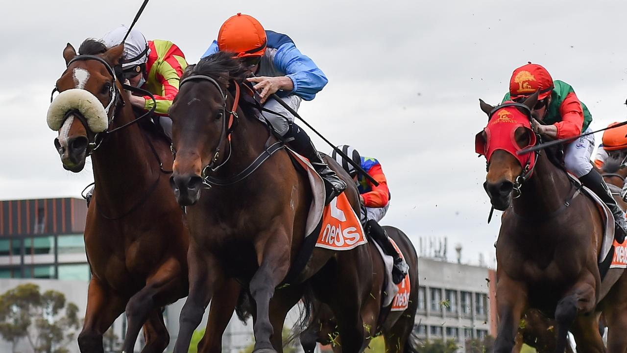 Duais, ridden by Michael Dee, drives between runners to win the Group 3 Coongy Cup. Picture: Racing Photos via Getty Images