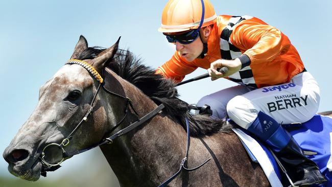 Trainer David Payne  is hoping Winona Costin's 3kg claim will provide Chez Harmony with a decisive advantage — just as it did last week with Paederos and Foreign Prince.