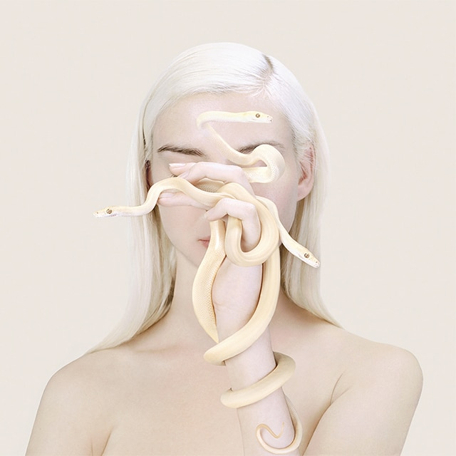 10 things inspiring artist and photographer Petrina Hicks right now
