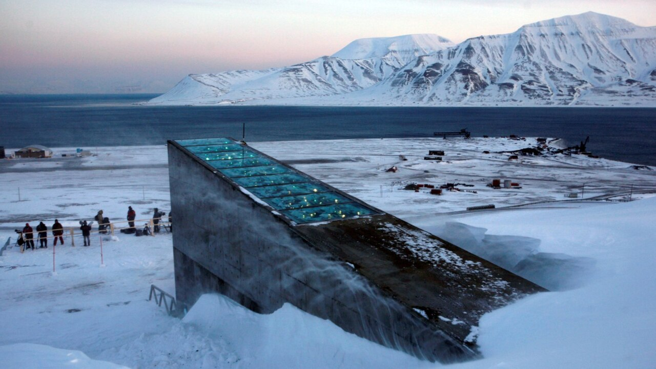 Australian seeds sealed inside Norway doomsday vault