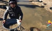 Best family road trips for gold panning