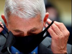 Dr Anthony Fauci 'appears to be at war with himself'
